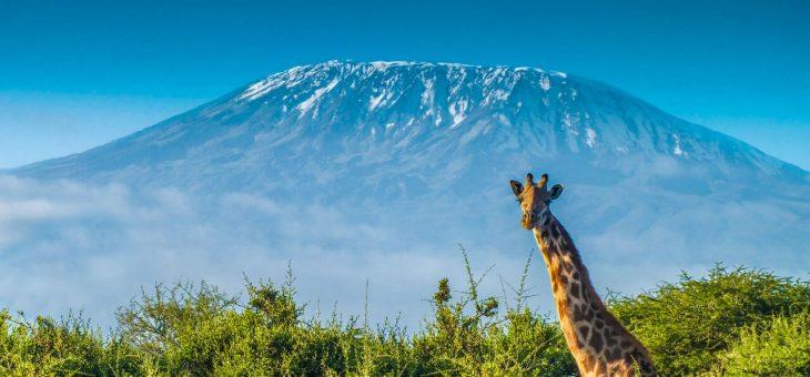 El ciclismo femenino apostando por los retos – Mujeres al Kilimanjaro
